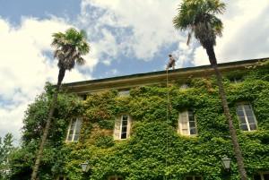 2. Úprava zelené fasády domu v Itálii_Starwork