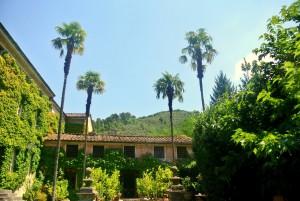 5. Úprava zelené fasády domu v Itálii_Starwork